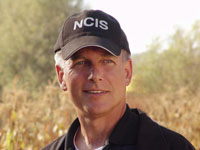why-ncis-seasons-14-and-15-are-a-bad-idea