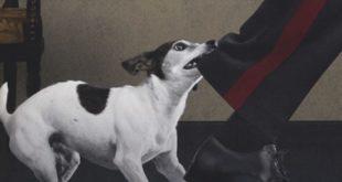a cantare fu il cane vitali