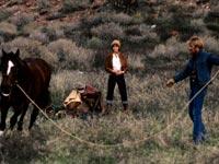 Cinema a cavallo