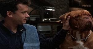 Una scena di Turner e il casinaro